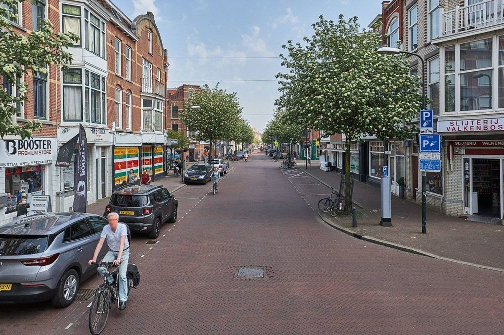 Valkenboslaan, Den Haag foto-22 blur