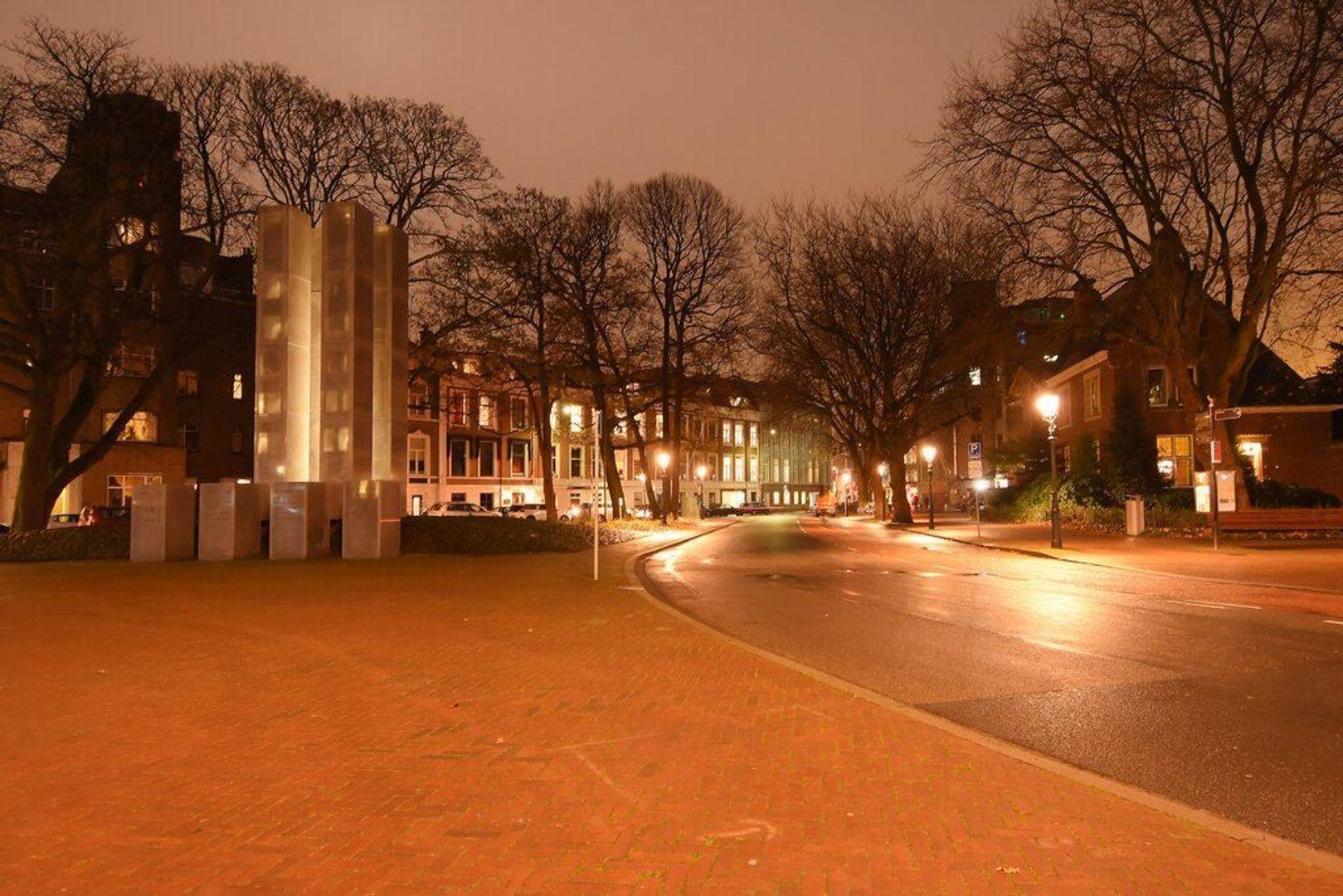 Anna Paulownastraat, Den Haag foto-46 blur