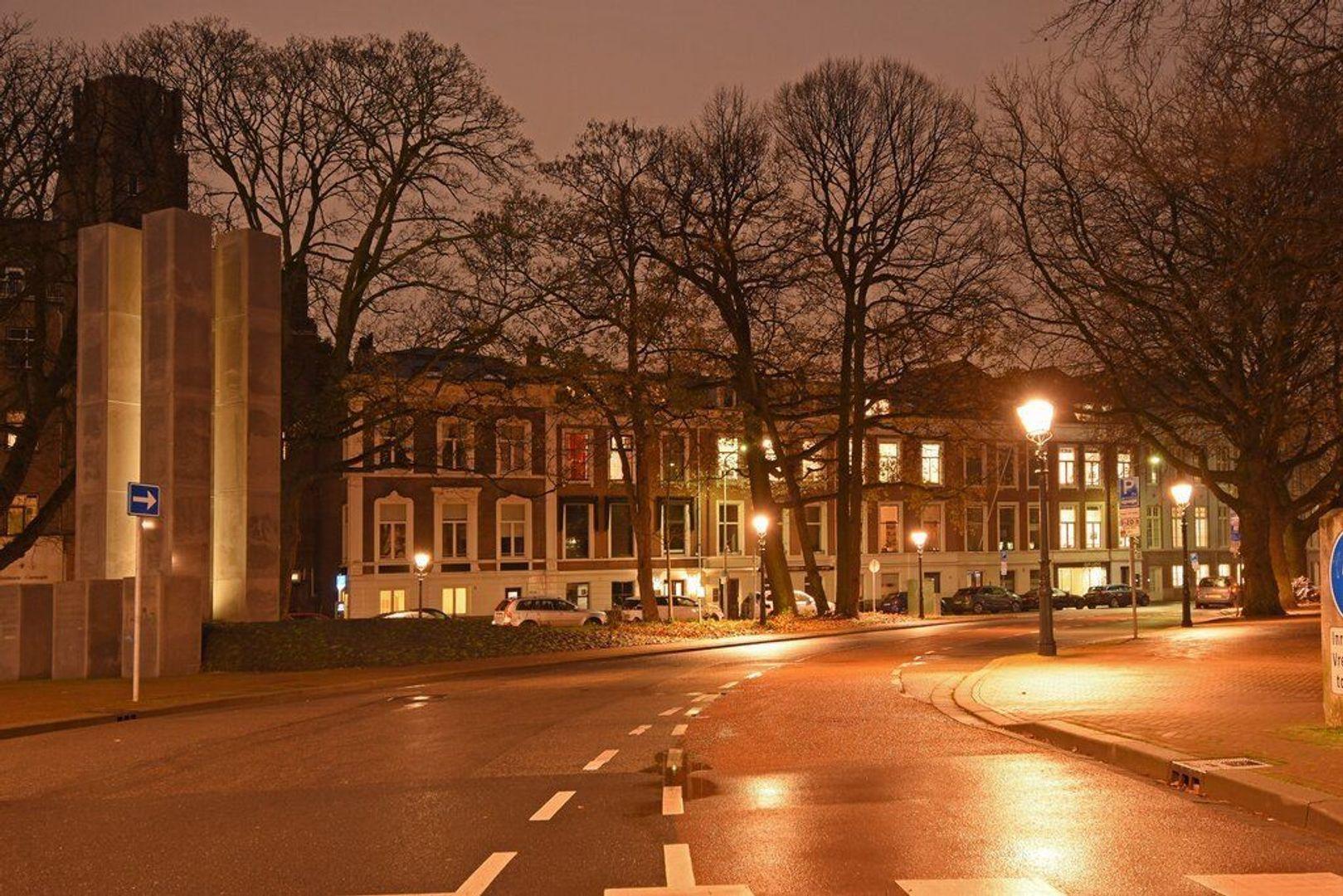 Anna Paulownastraat, Den Haag foto-47 blur