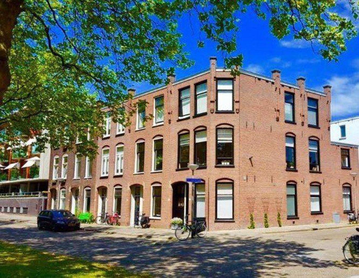 Oostsingel, Delft foto-23 blur