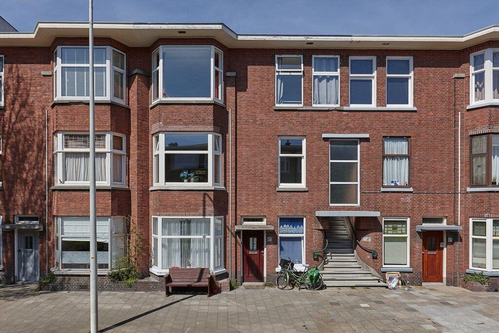 Mient, Den Haag foto-7 blur