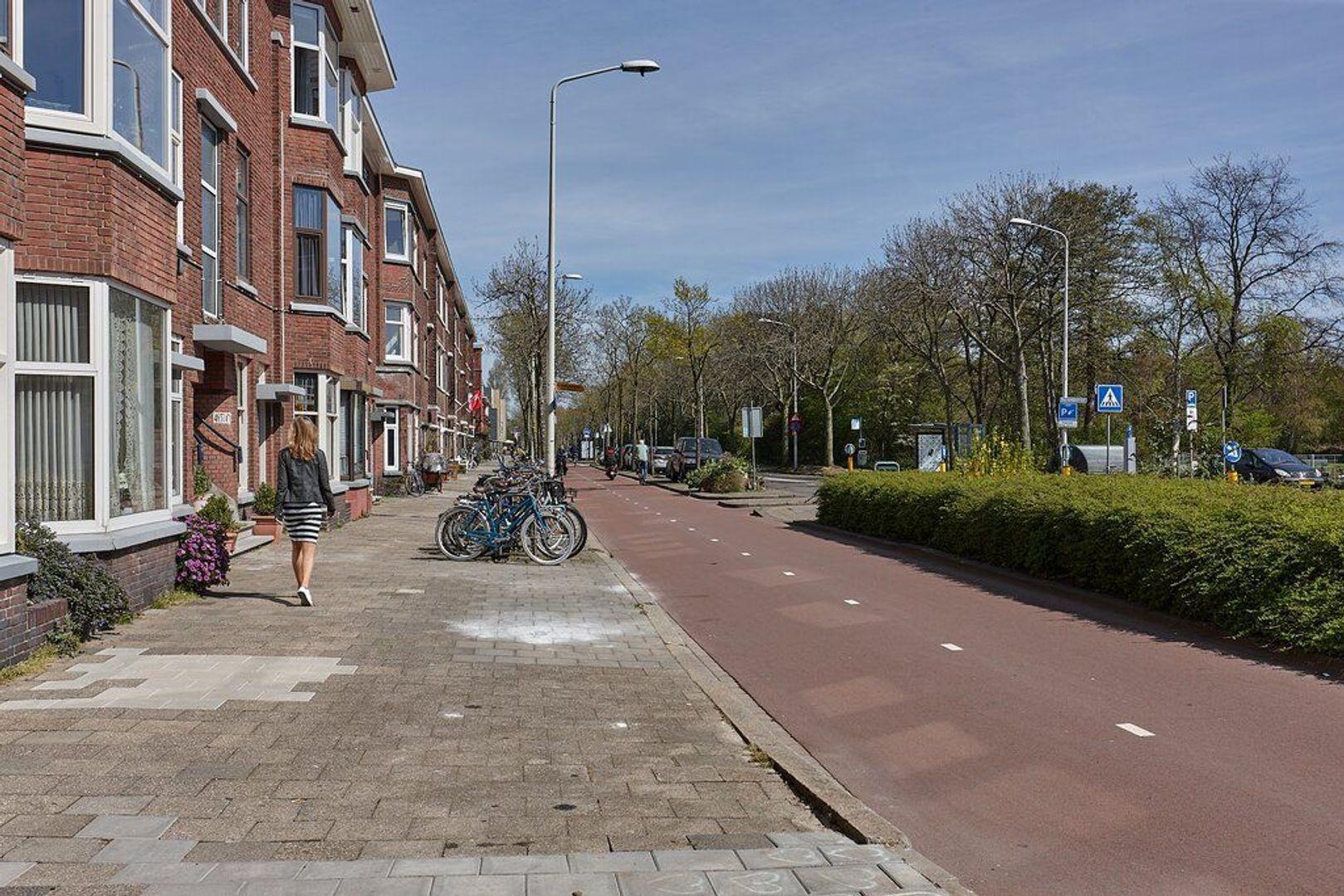 Mient, Den Haag foto-19 blur
