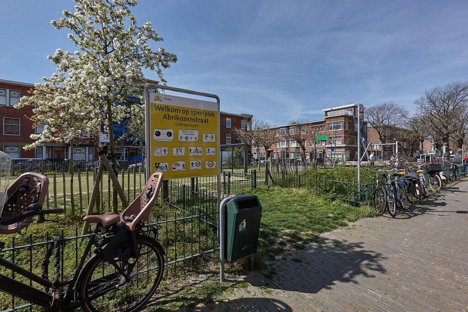 Mient, Den Haag foto-22 blur