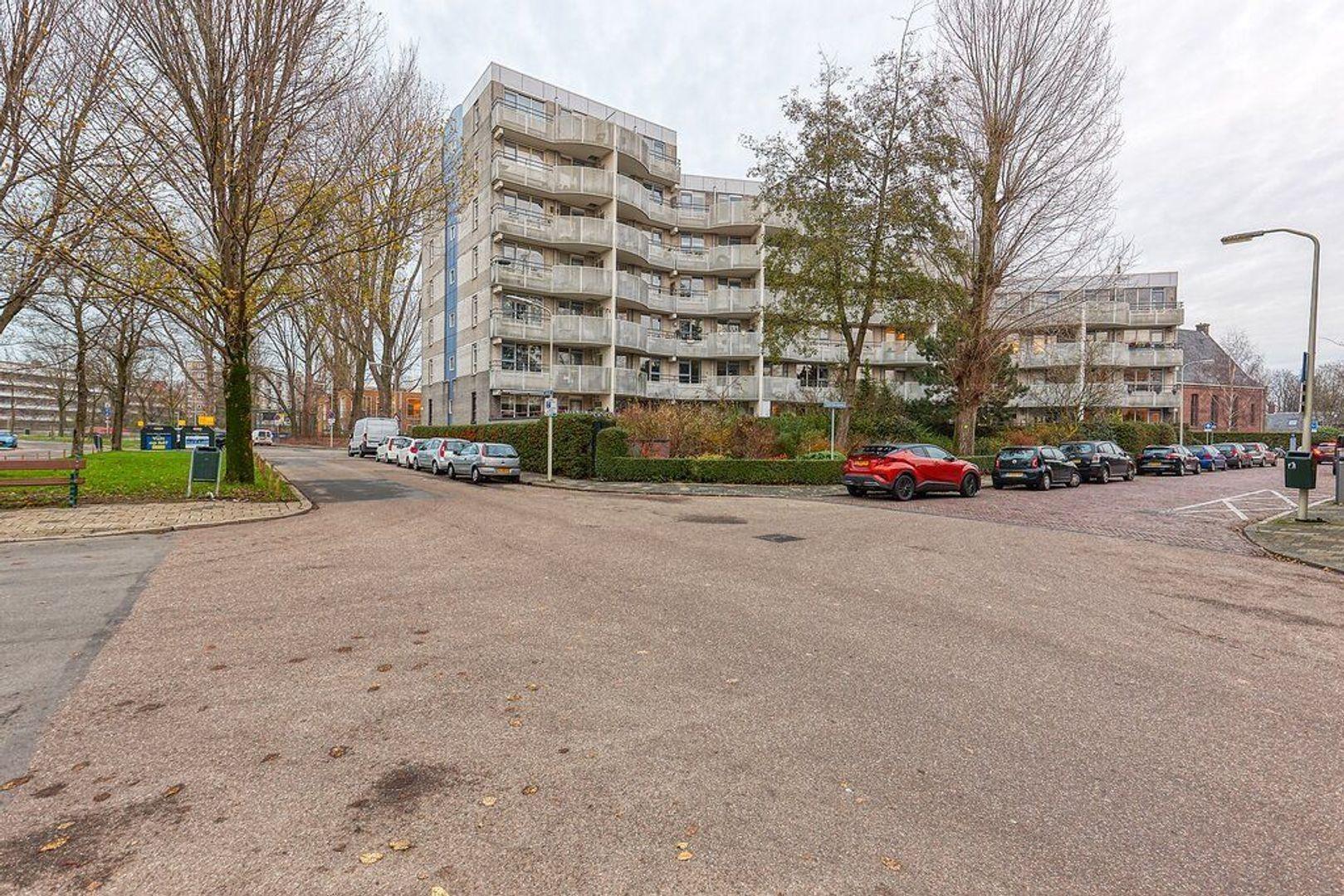 Beeklaan, Den Haag foto-18 blur