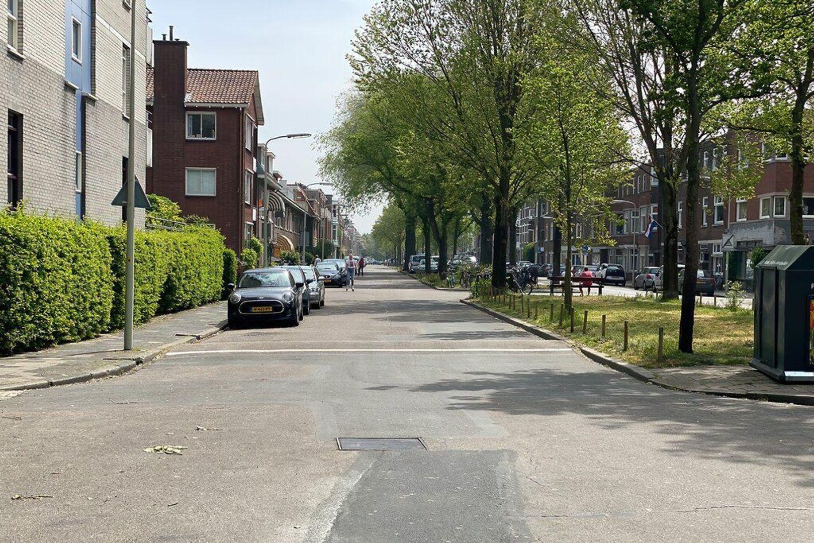 Beeklaan, Den Haag foto-19 blur