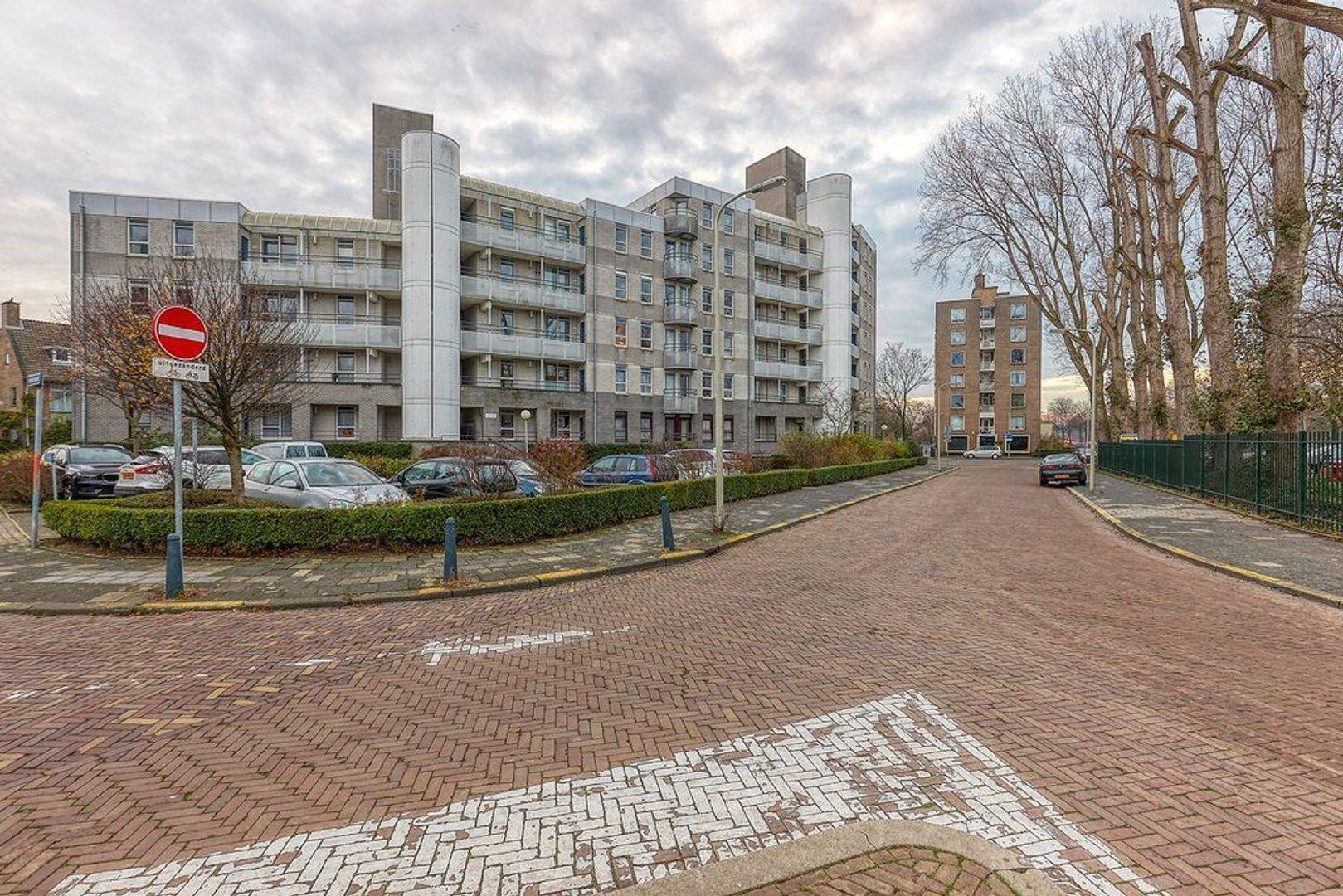 Beeklaan, Den Haag foto-15 blur