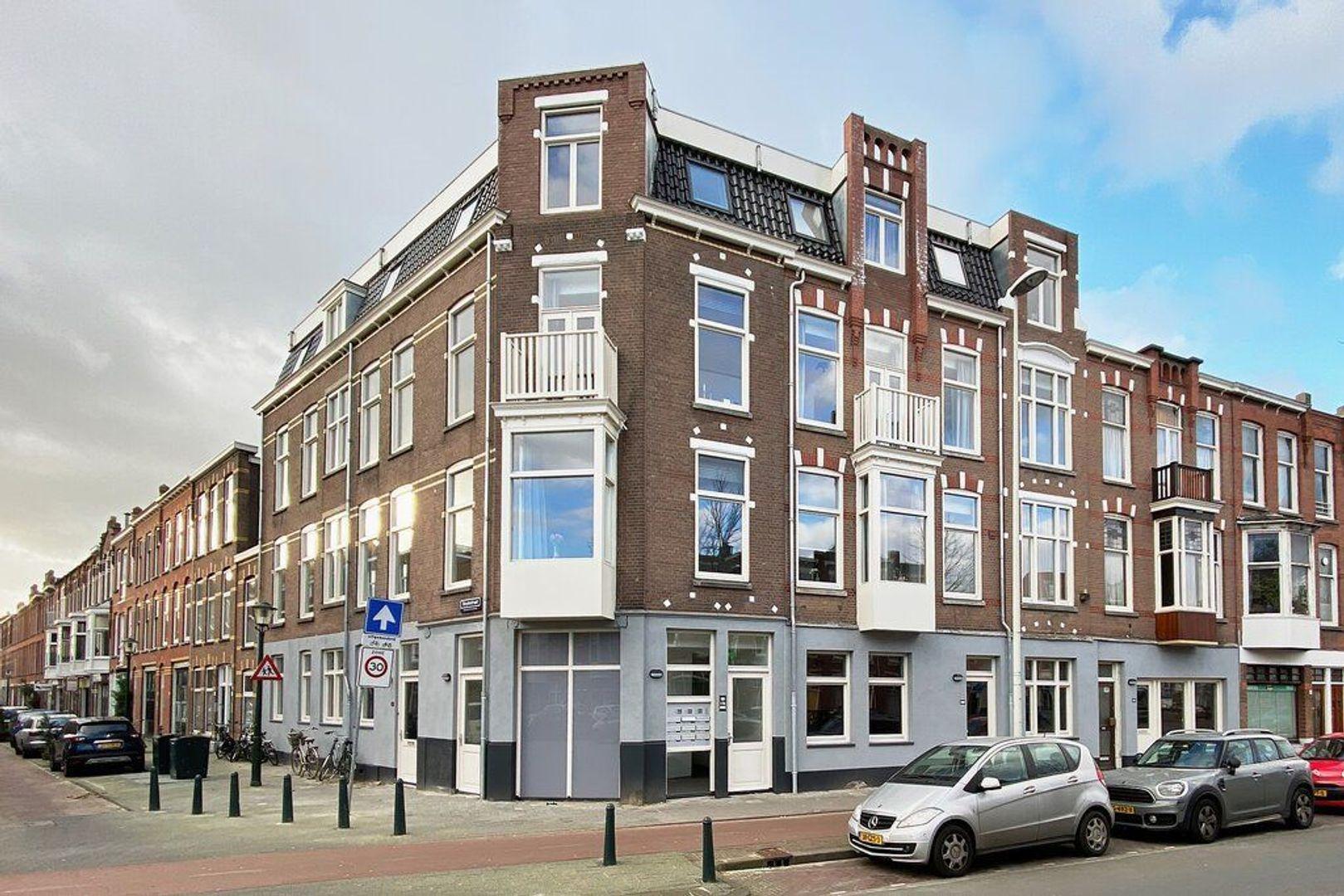 Valkenboslaan, Den Haag foto-16 blur