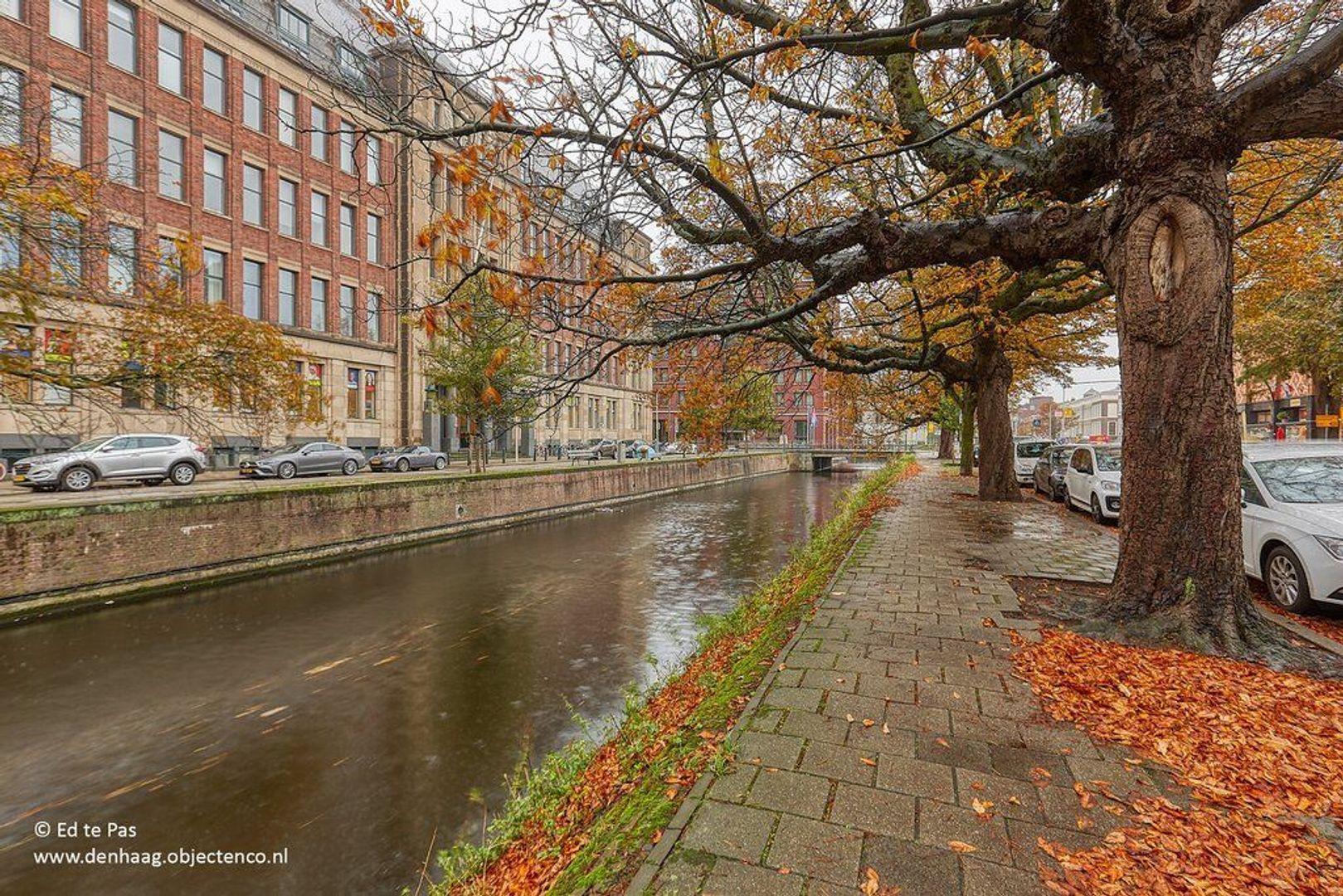 Hogewal, Den Haag foto-25 blur
