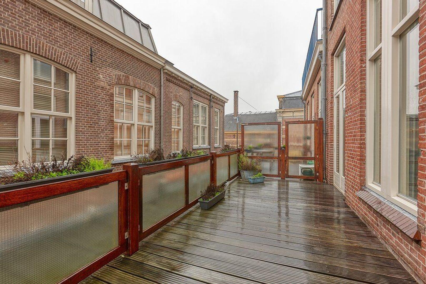 Hogewal, Den Haag foto-19 blur
