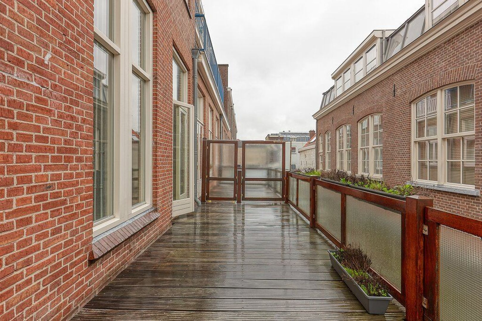 Hogewal, Den Haag foto-20 blur