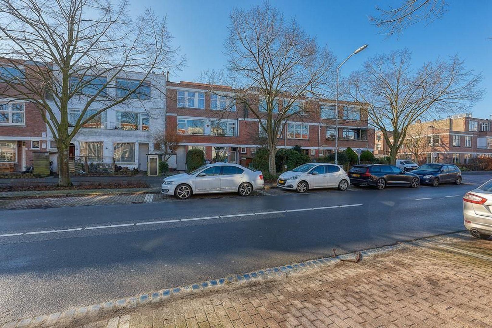 Koningin Wilhelminalaan, Voorburg foto-28 blur