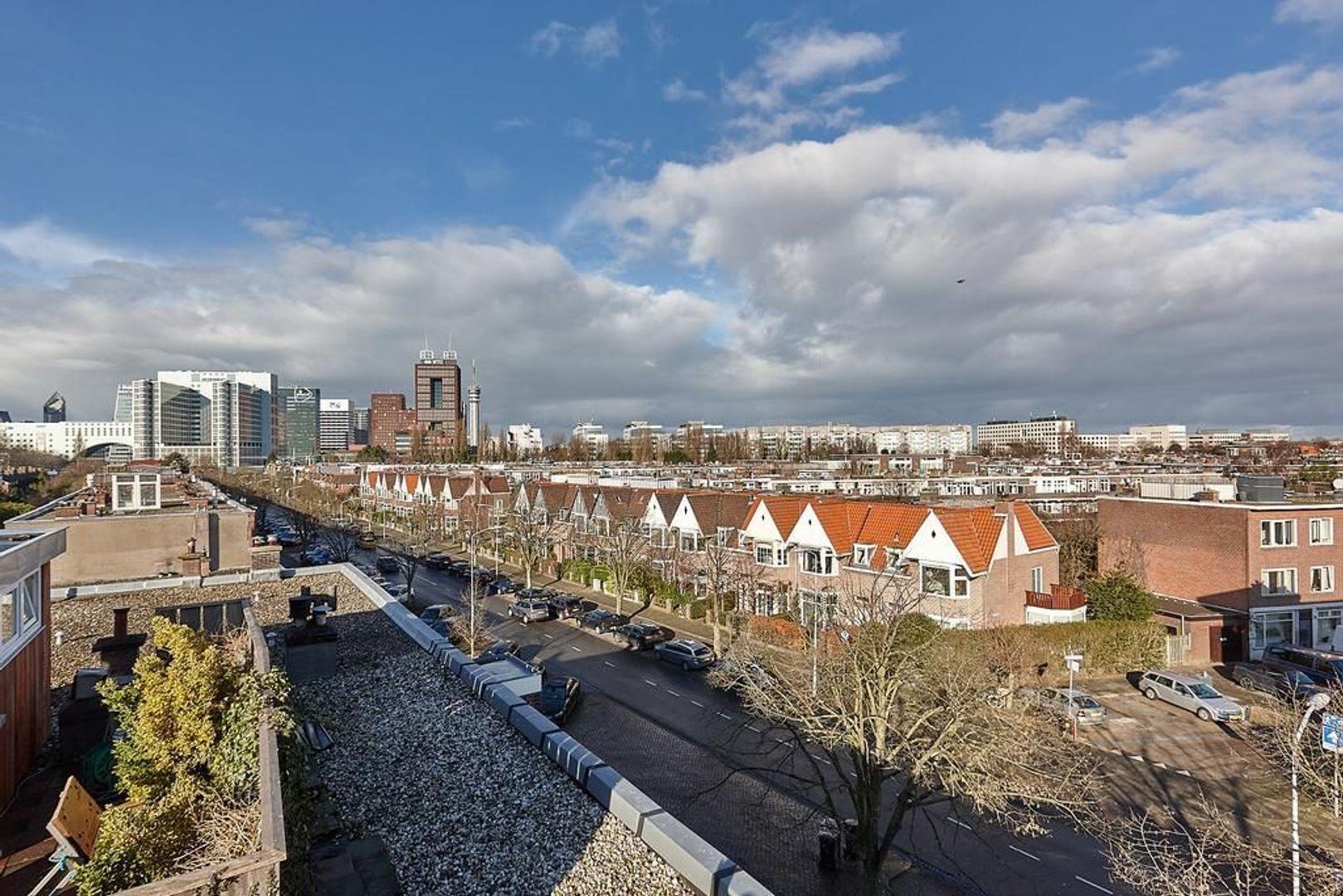 Koningin Wilhelminalaan, Voorburg foto-25 blur
