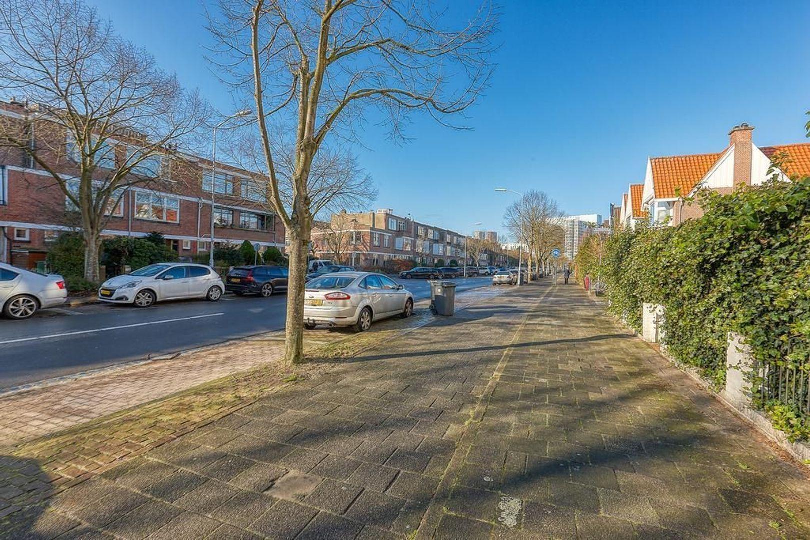 Koningin Wilhelminalaan, Voorburg foto-29 blur
