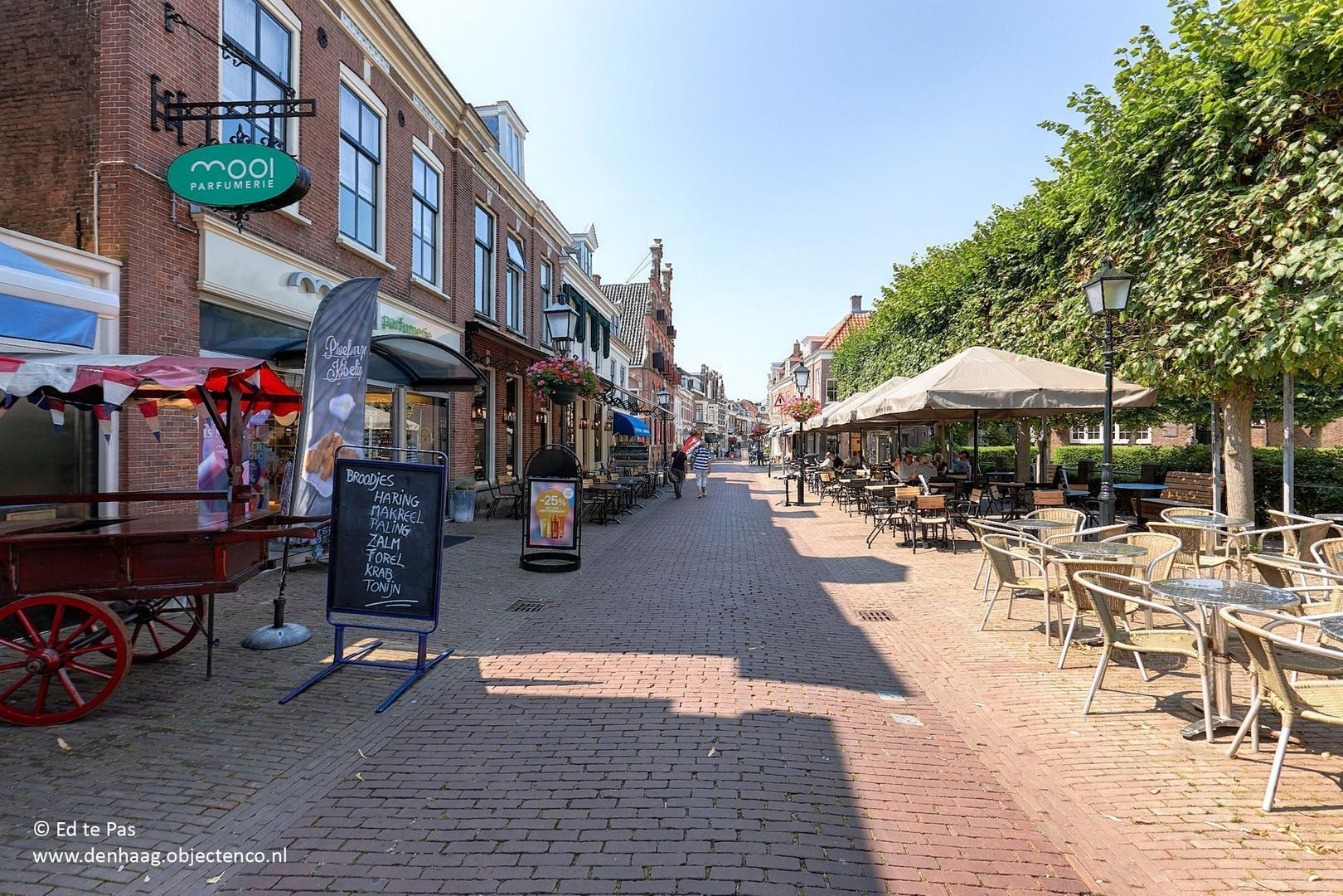 Koningin Wilhelminalaan, Voorburg foto-30 blur
