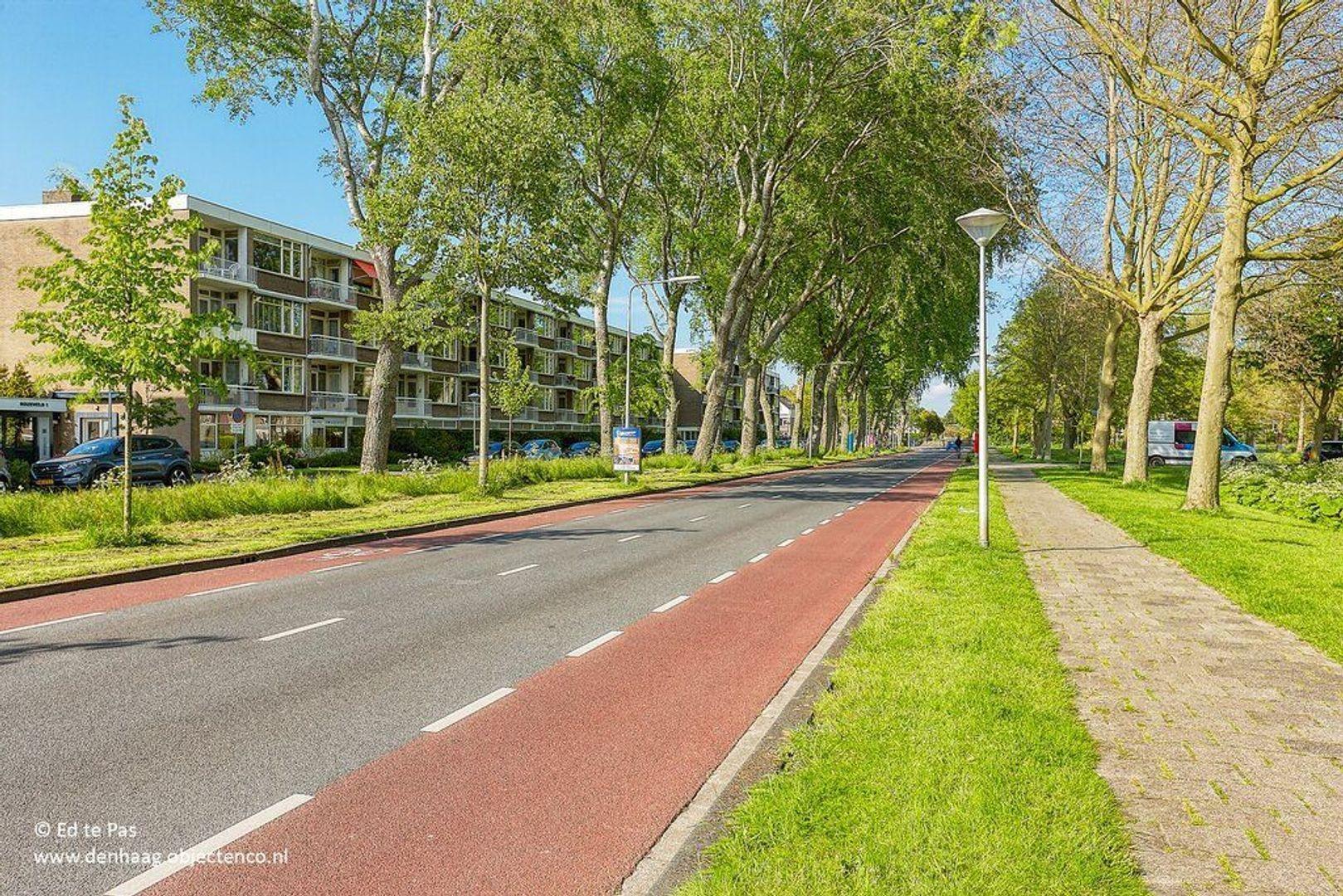 Starrenburglaan, Wassenaar foto-32 blur