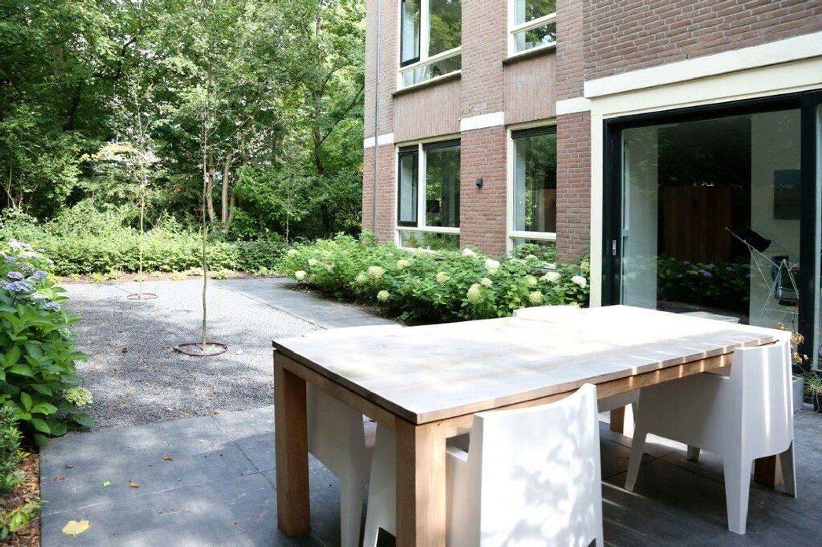 Johan van Oldenbarneveltlaan, Den Haag foto-27 blur