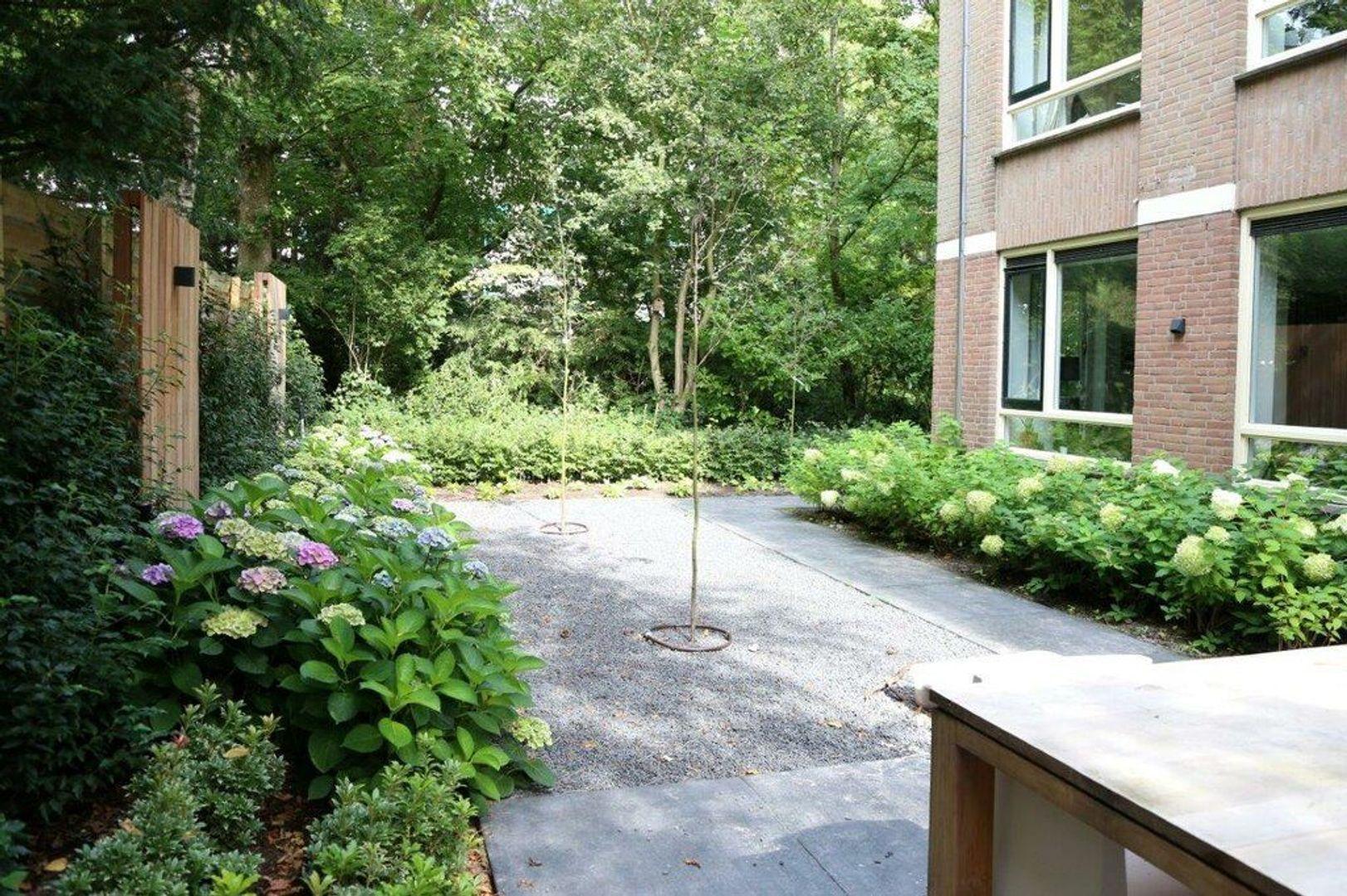 Johan van Oldenbarneveltlaan, Den Haag foto-2 blur