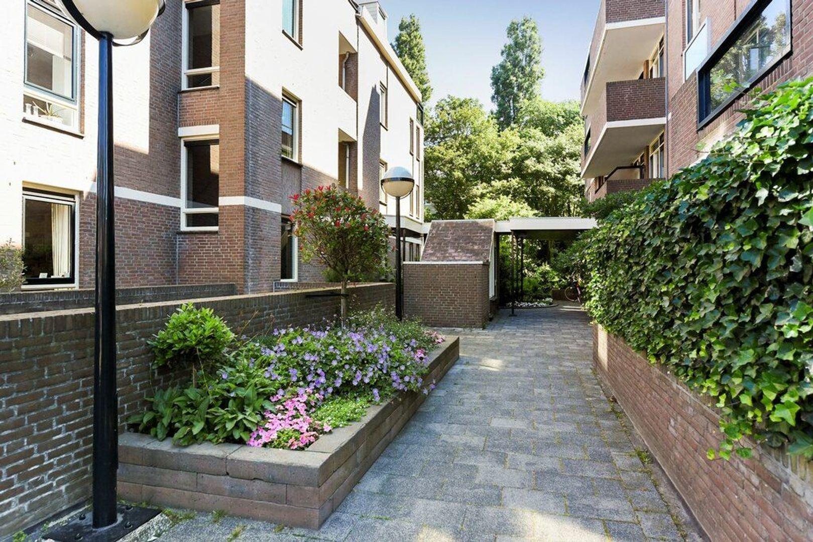 Johan van Oldenbarneveltlaan, Den Haag foto-34 blur