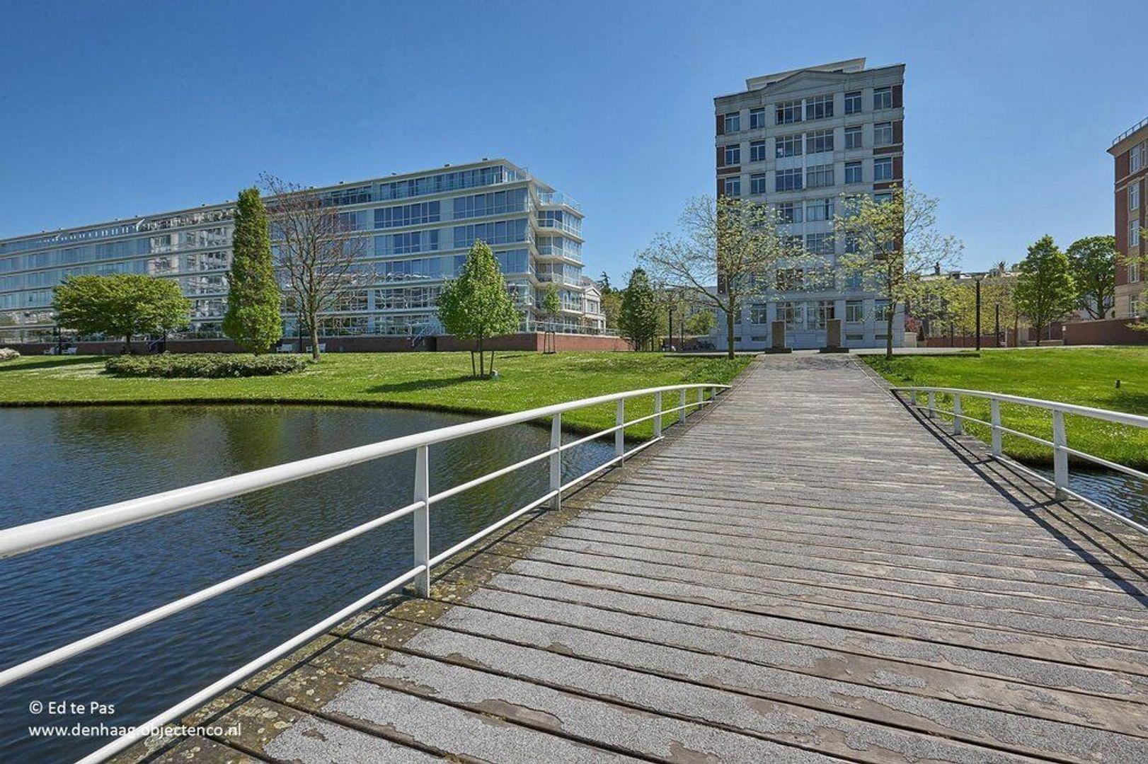 Burgemeester De Monchyplein, Den Haag foto-21 blur