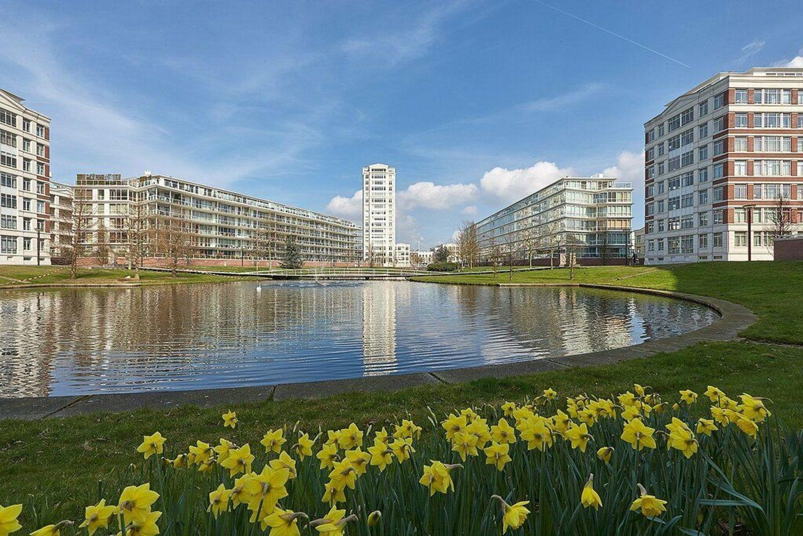 Burgemeester De Monchyplein, Den Haag foto-22 blur