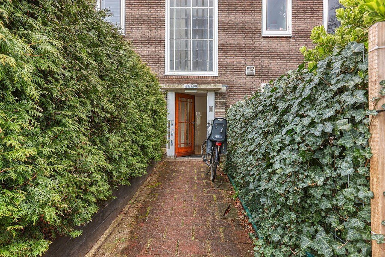 Laan van Nieuw Oosteinde, Voorburg foto-28 blur
