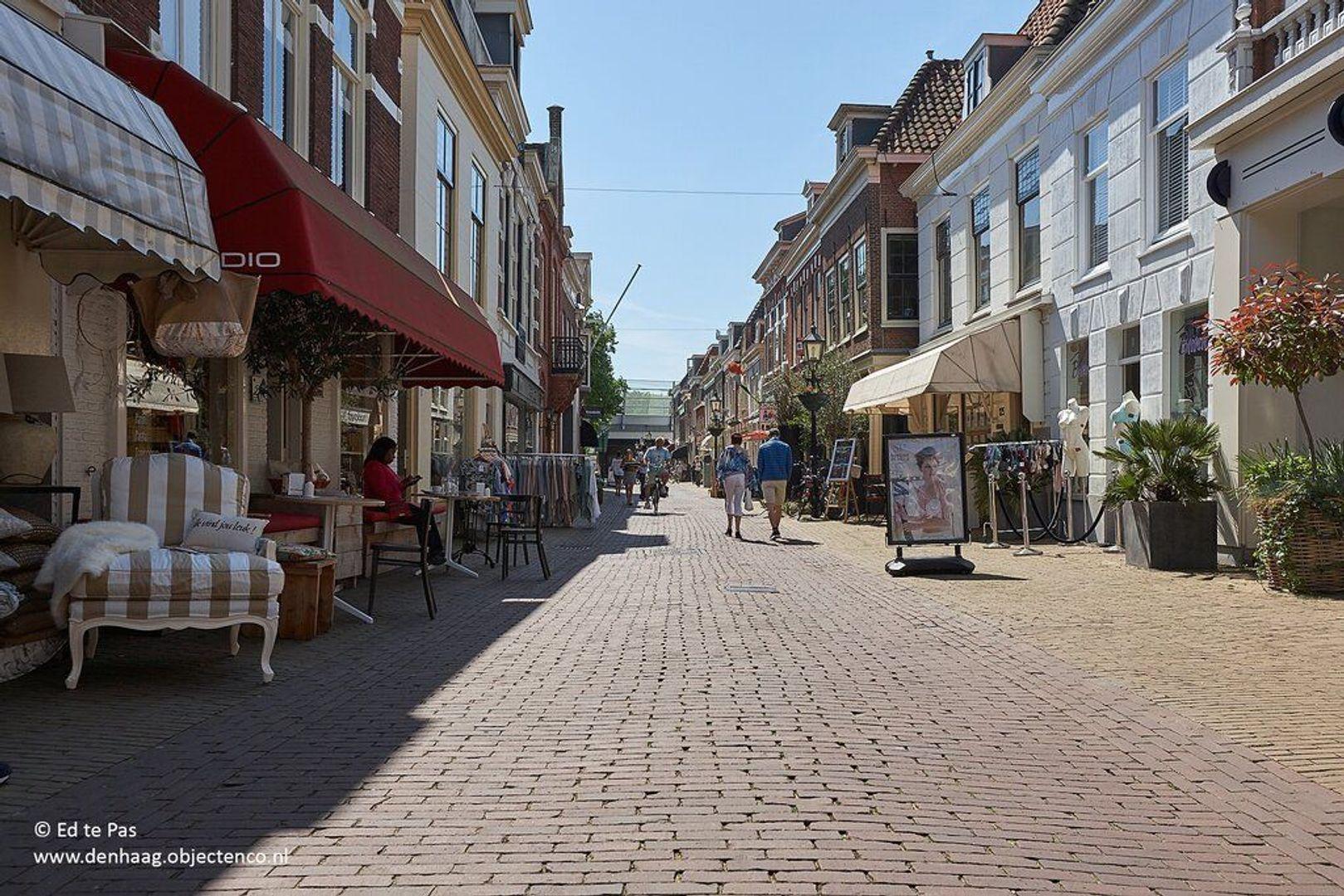Laan van Nieuw Oosteinde, Voorburg foto-31 blur