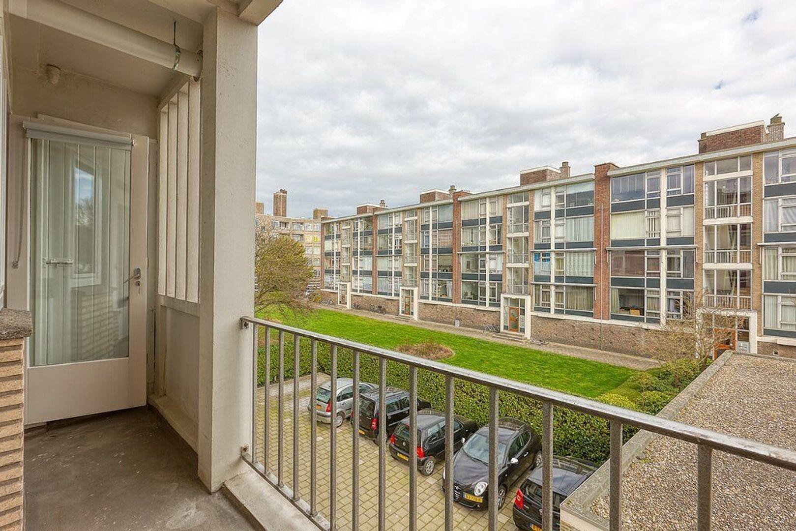 Smaragdhorst, Den Haag foto-10 blur