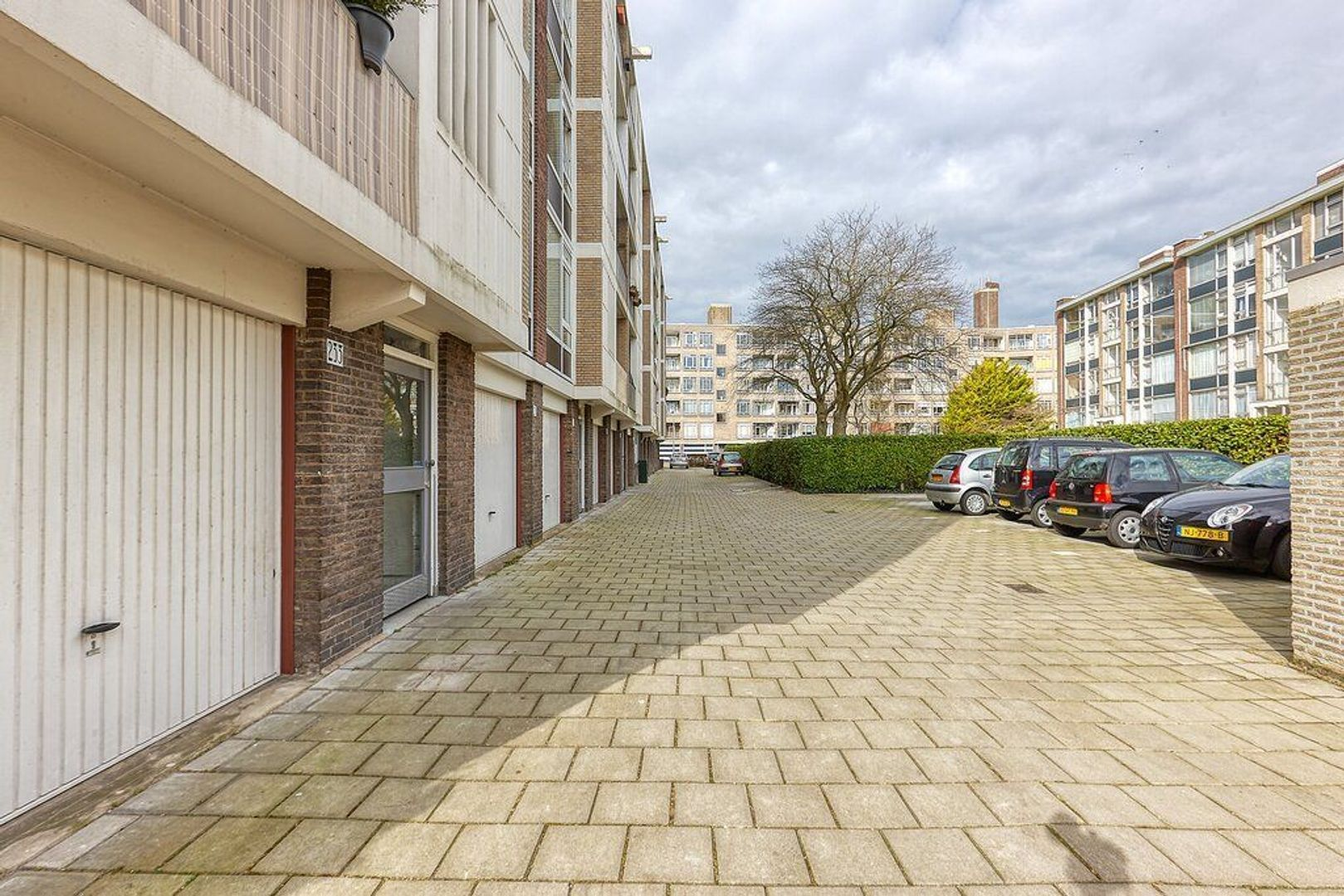 Smaragdhorst, Den Haag foto-25 blur