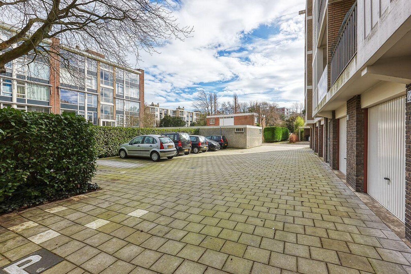 Smaragdhorst, Den Haag foto-26 blur