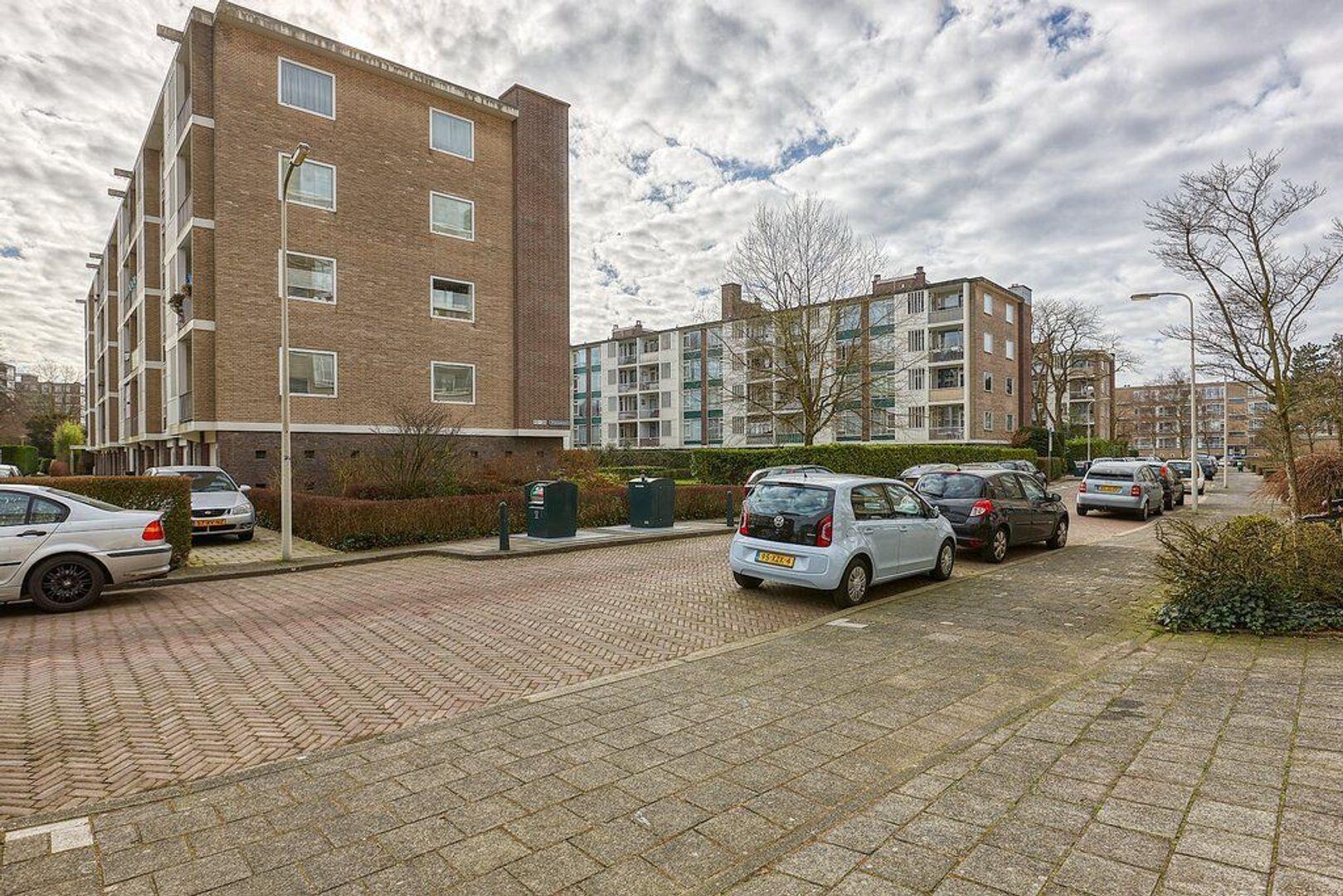 Smaragdhorst, Den Haag foto-21 blur