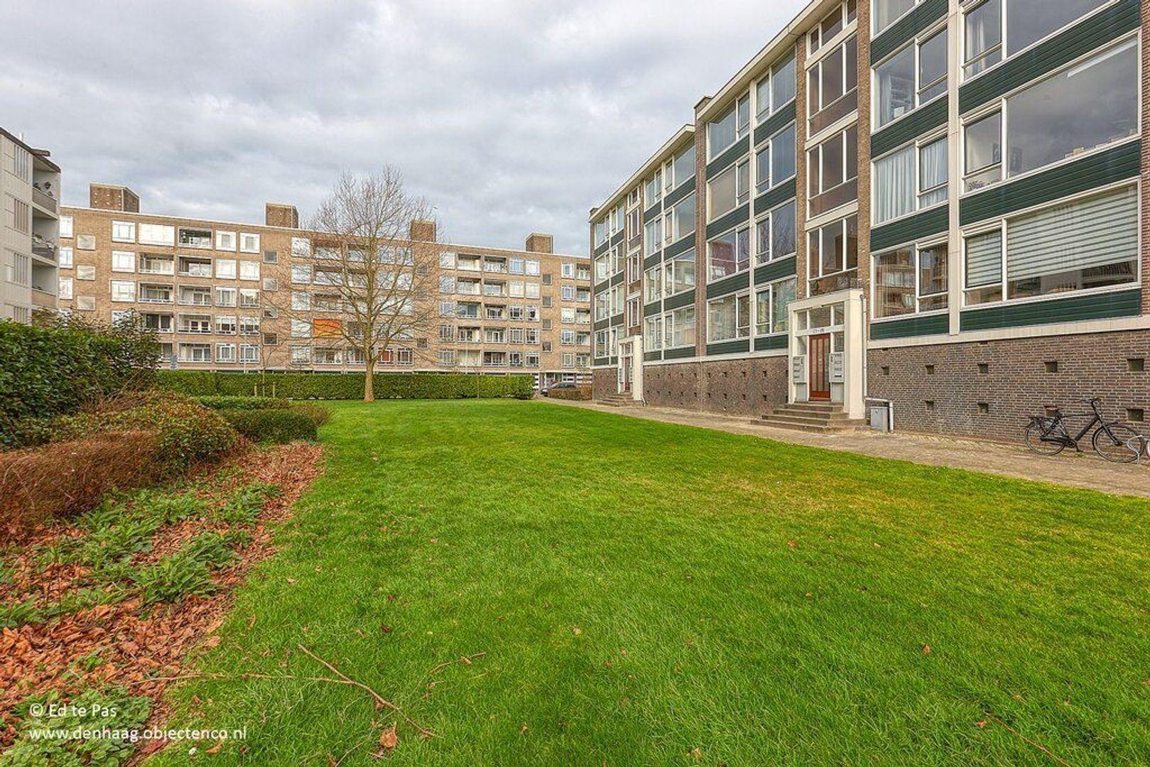 Smaragdhorst, Den Haag foto-23 blur
