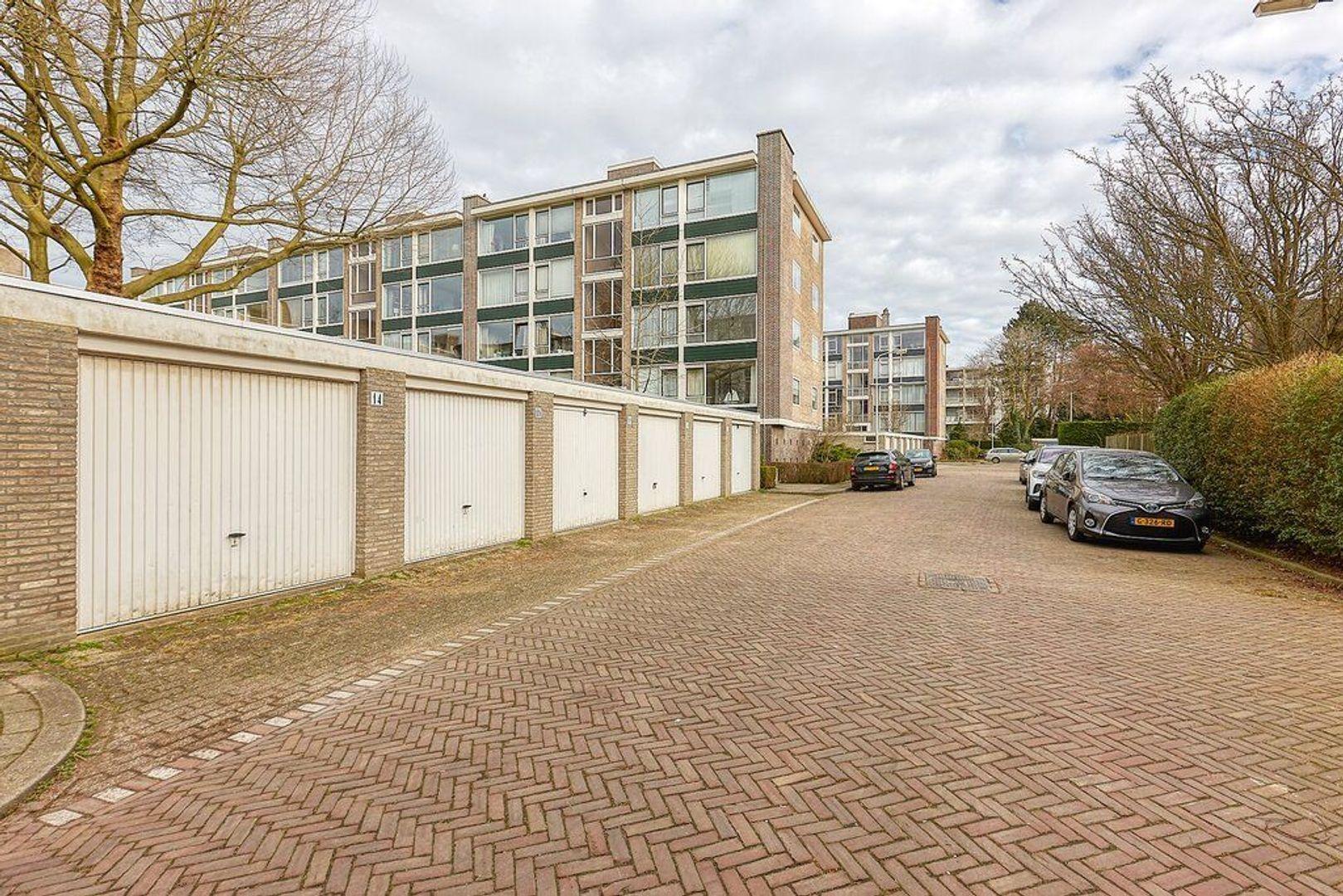 Smaragdhorst, Den Haag foto-24 blur