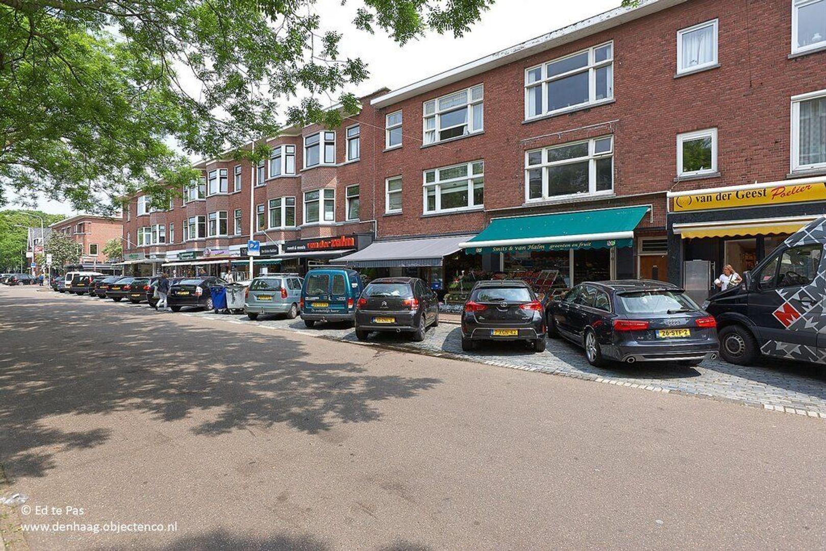 Benoordenhoutseweg, Den Haag foto-27 blur