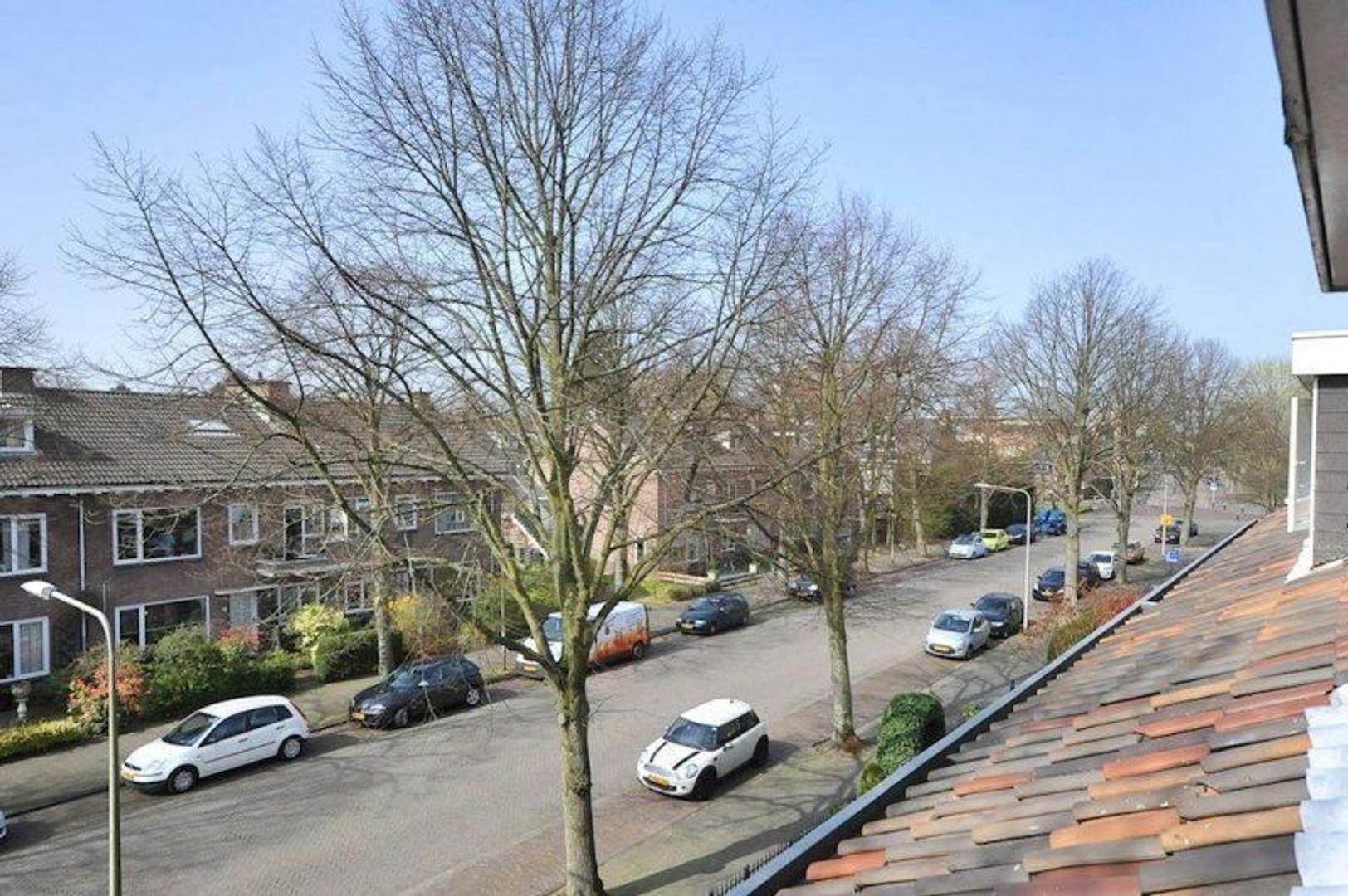 Hofcampweg, Wassenaar foto-17 blur