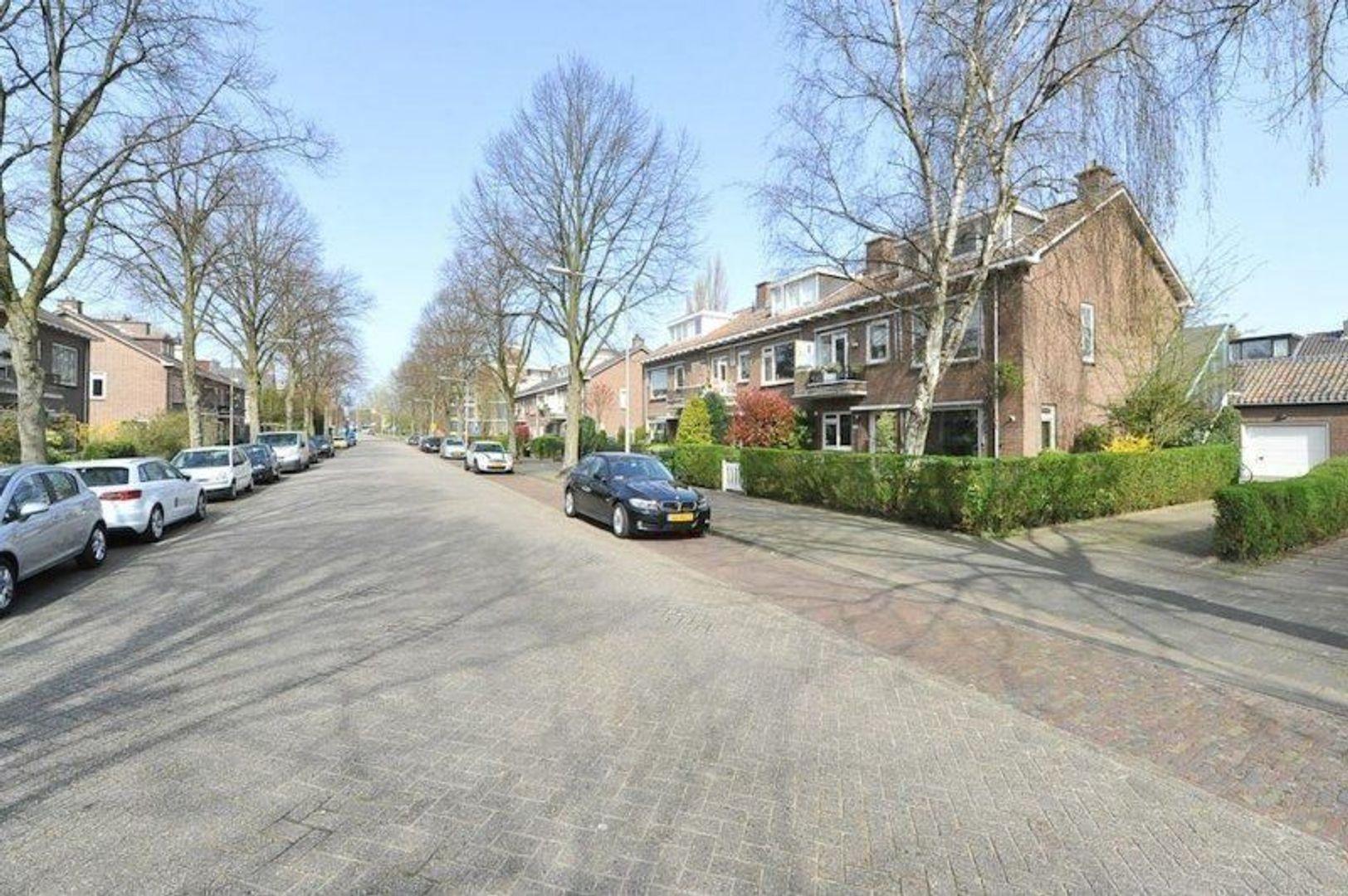 Hofcampweg, Wassenaar foto-25 blur