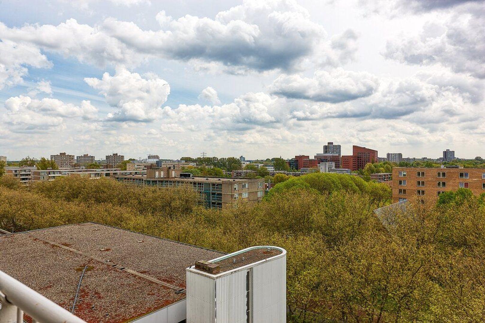 Granaathorst, Den Haag foto-25 blur