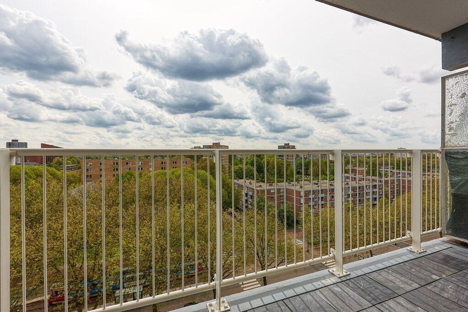 Granaathorst, Den Haag foto-13 blur