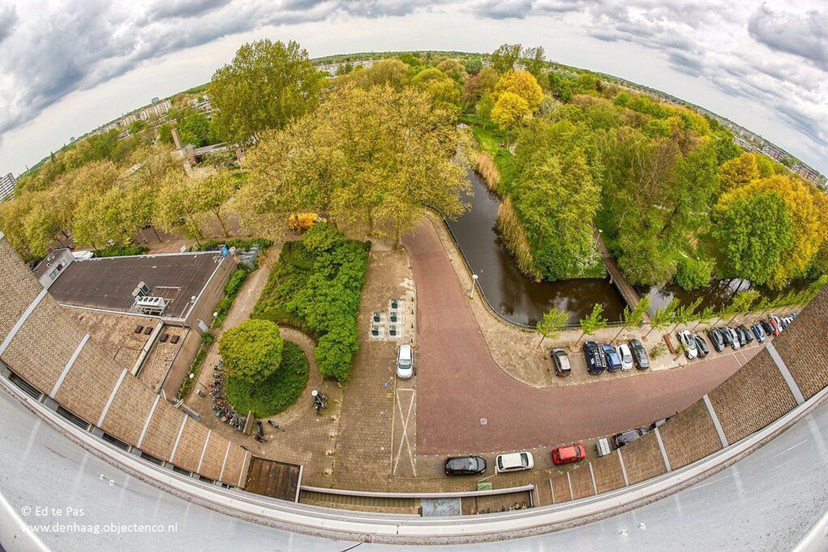 Granaathorst, Den Haag foto-26 blur