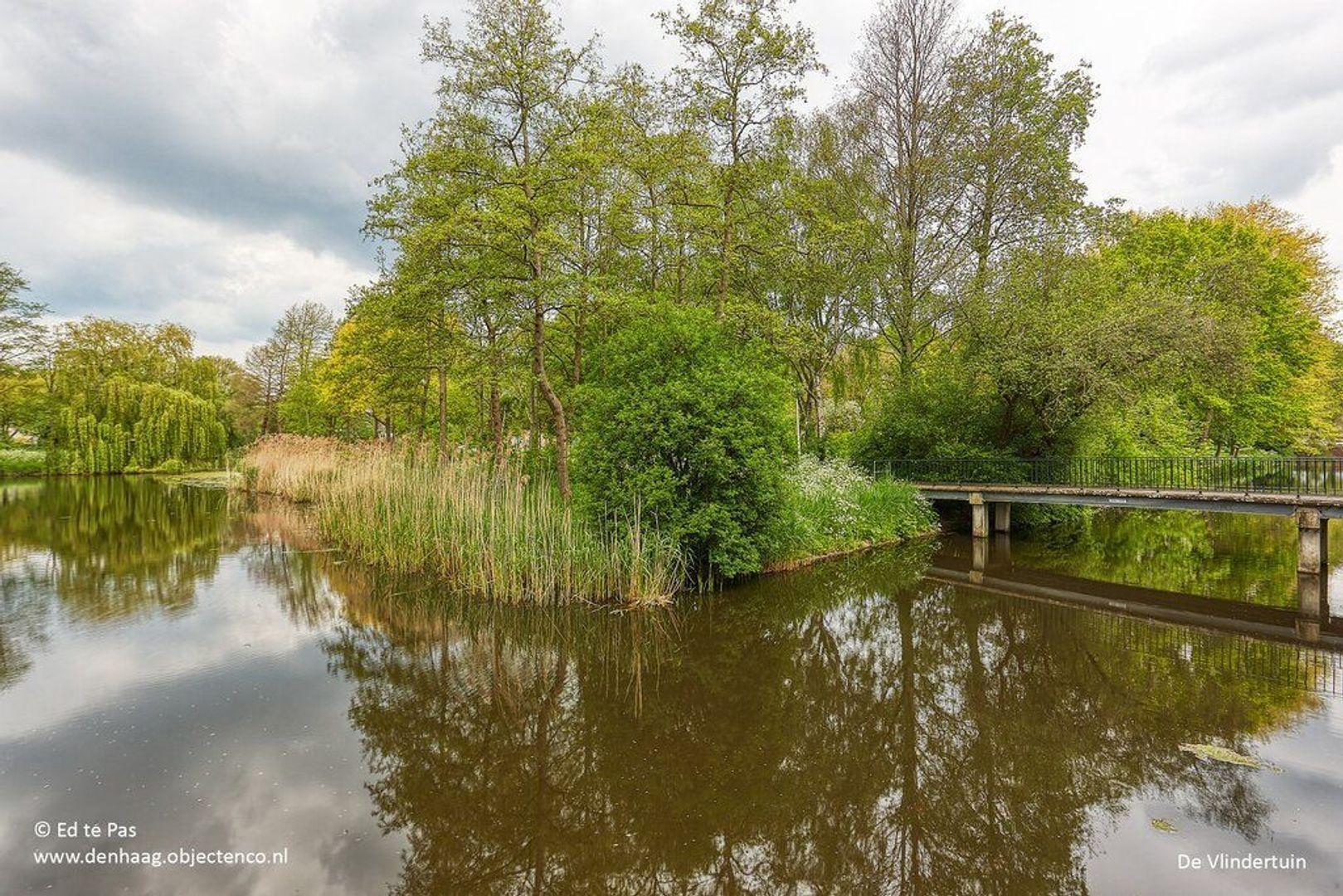 Granaathorst, Den Haag foto-28 blur