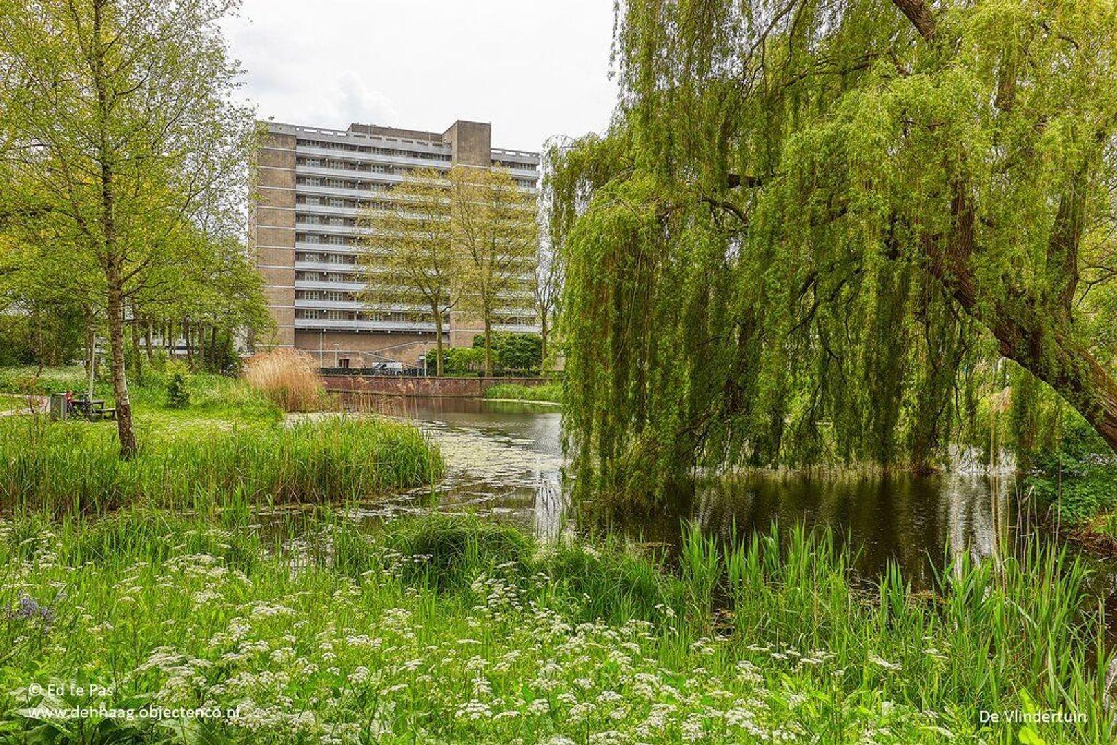 Granaathorst, Den Haag foto-29 blur