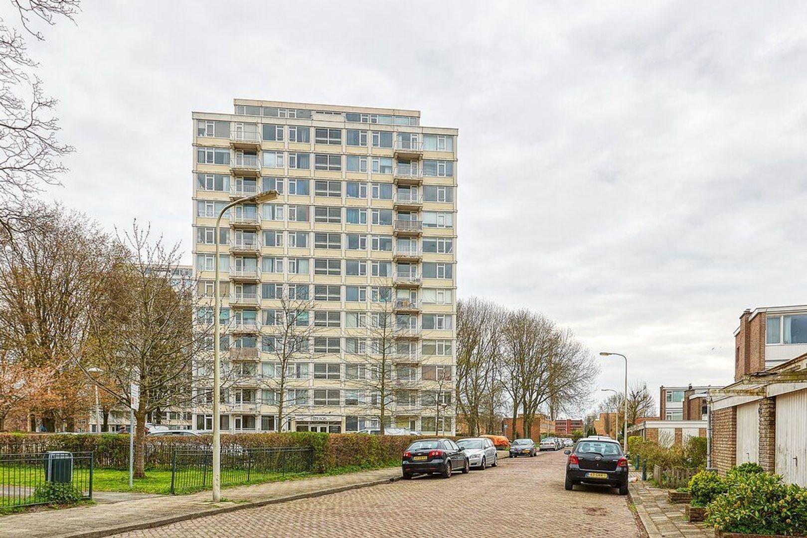 Gerstkamp, Den Haag foto-4 blur