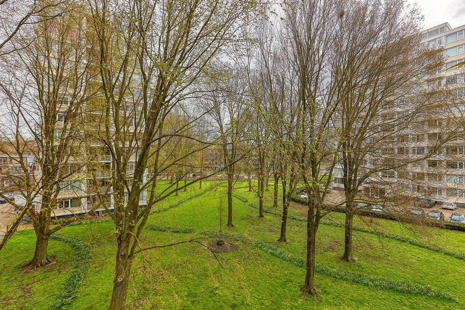 Gerstkamp, Den Haag foto-13 blur