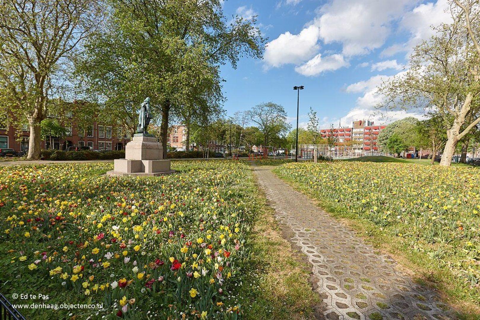 Kepplerstraat, Den Haag foto-27 blur