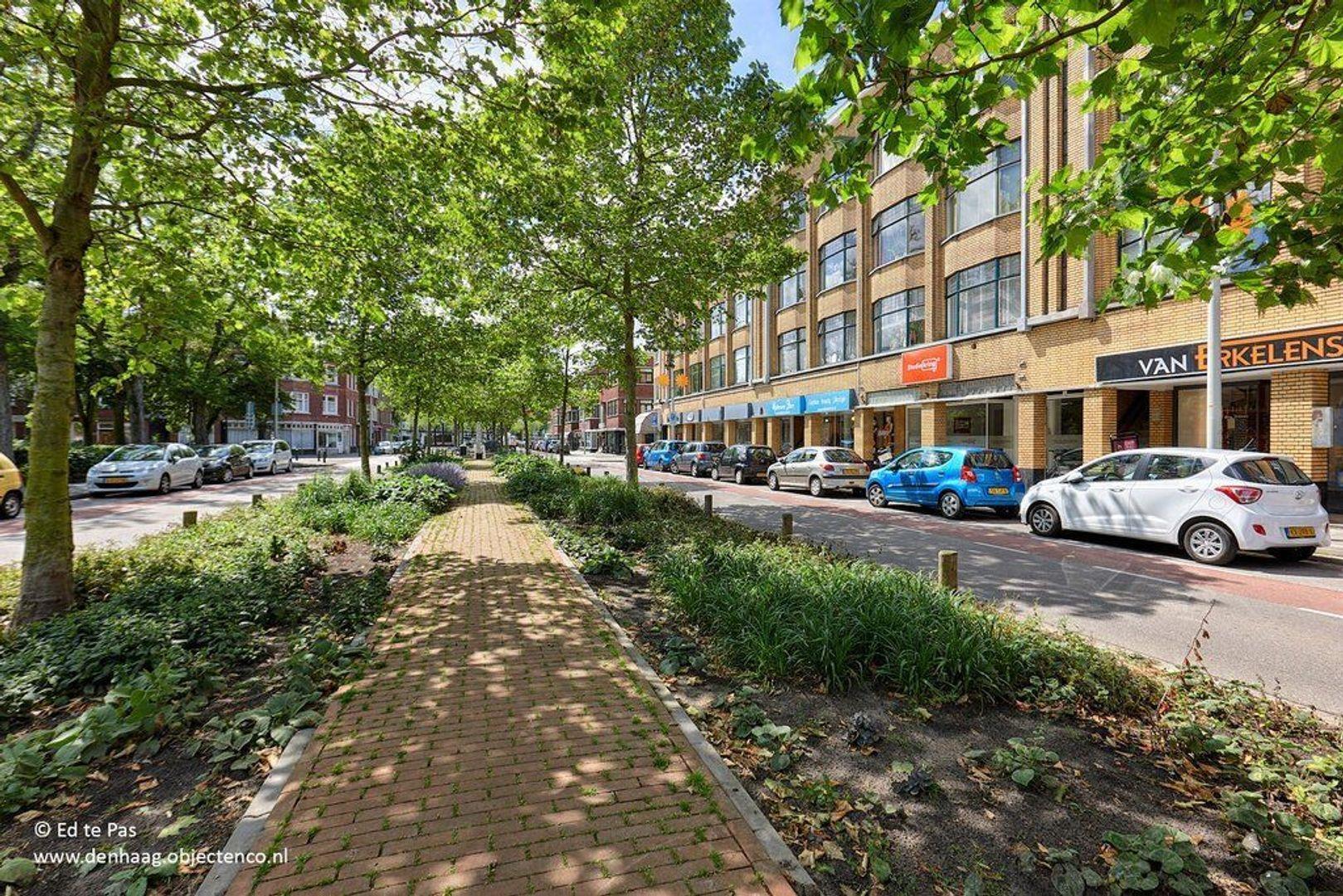 Vlierboomstraat, Den Haag foto-43 blur