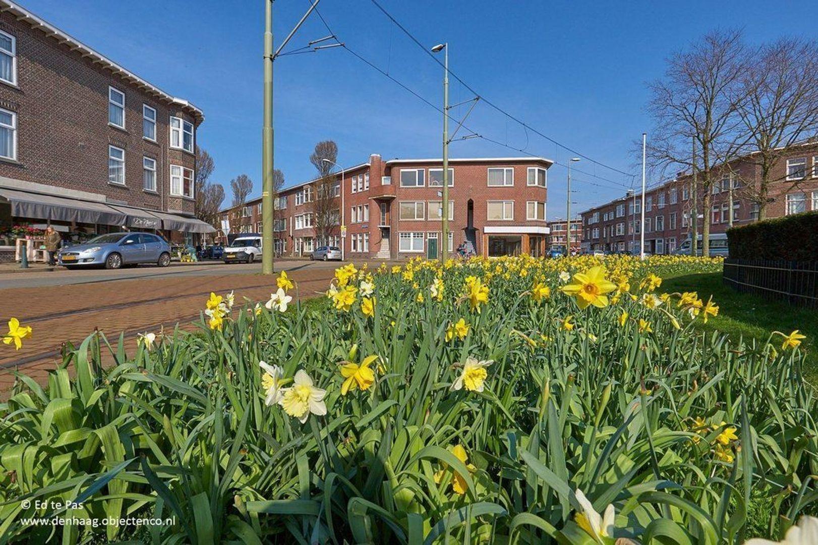 Stuyvesantplein, Den Haag foto-22 blur