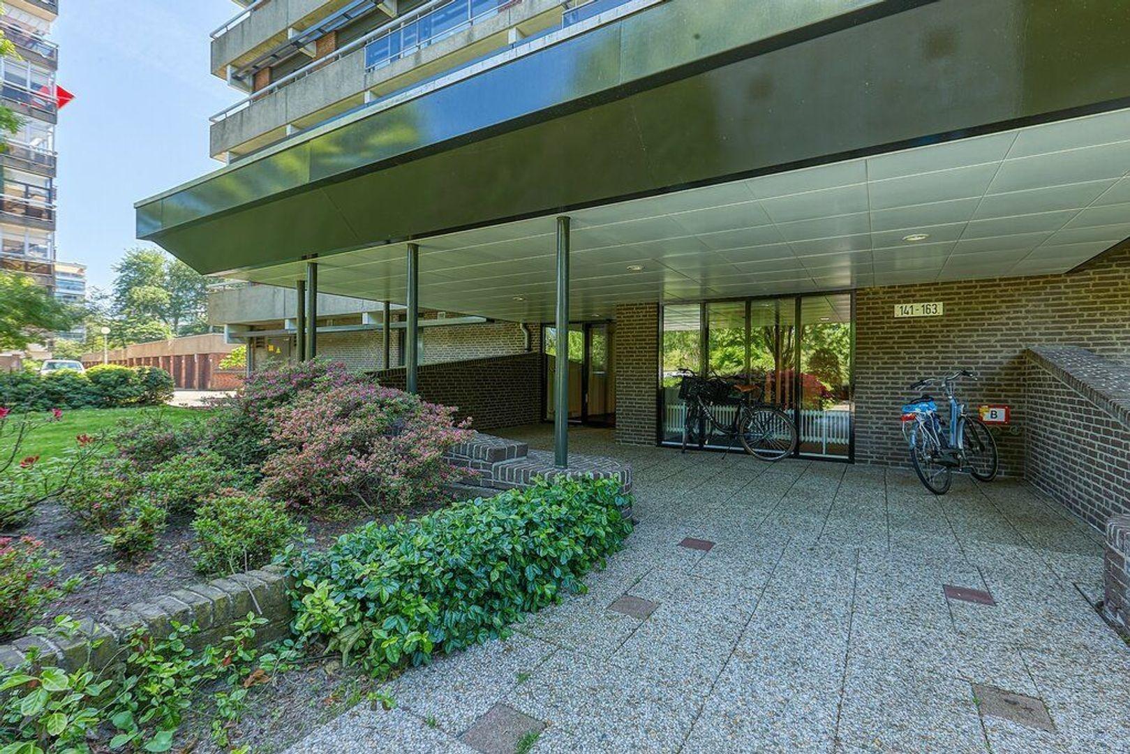 Else Mauhslaan, Den Haag foto-3 blur