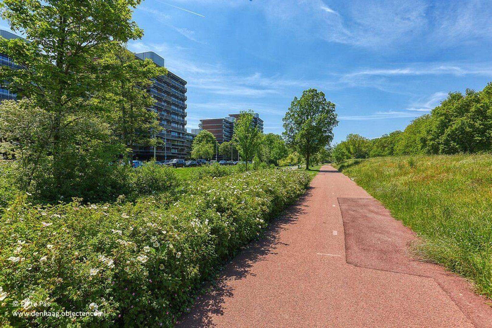 Else Mauhslaan, Den Haag foto-25 blur