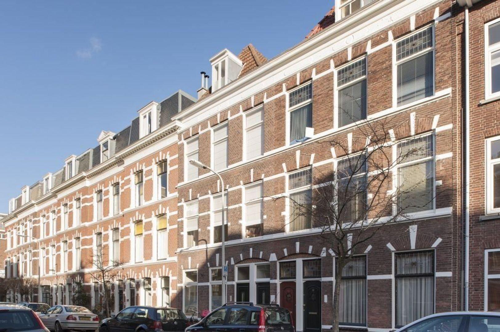 De Carpentierstraat, Den Haag foto-36 blur