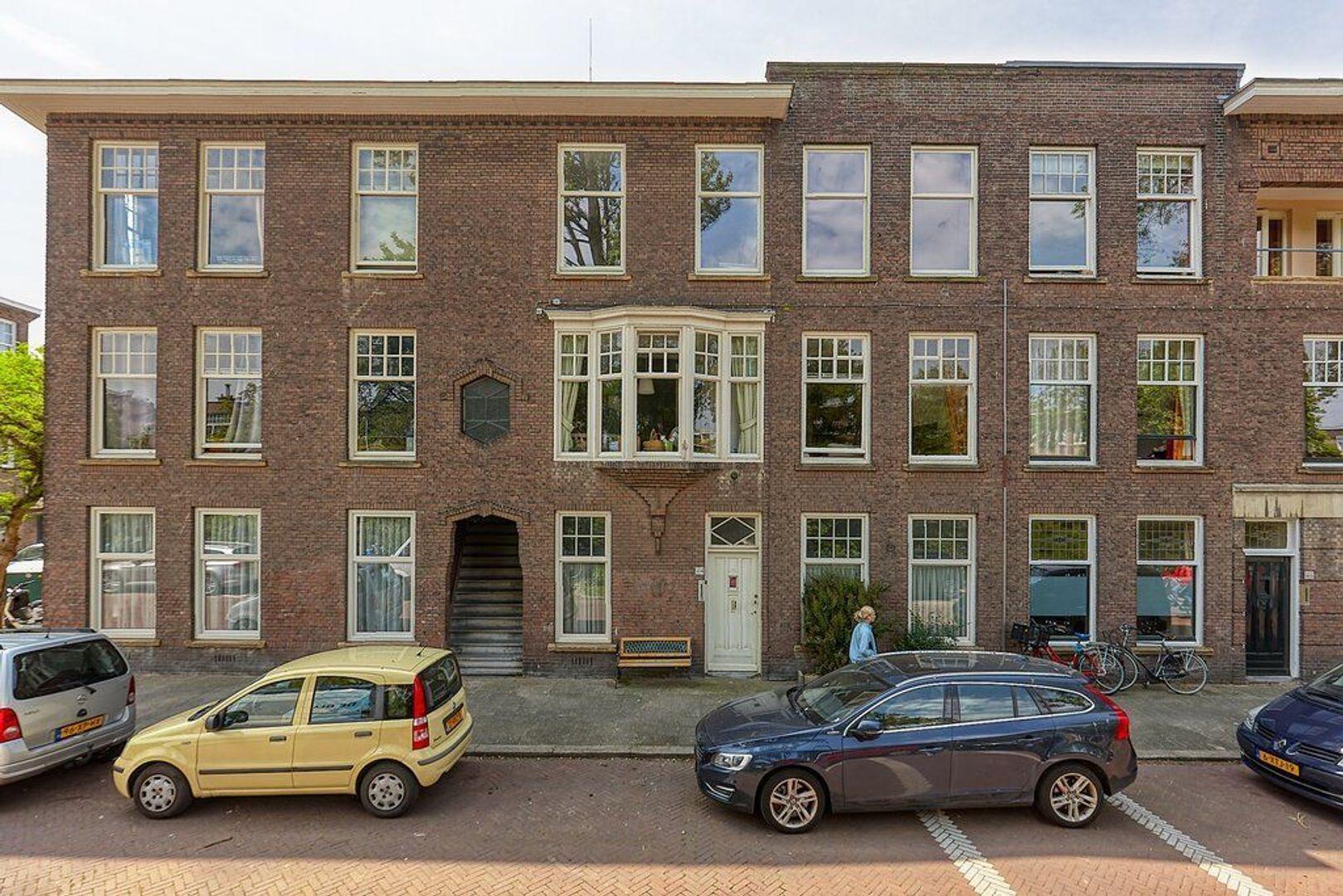 Valkenboskade, Den Haag foto-5 blur