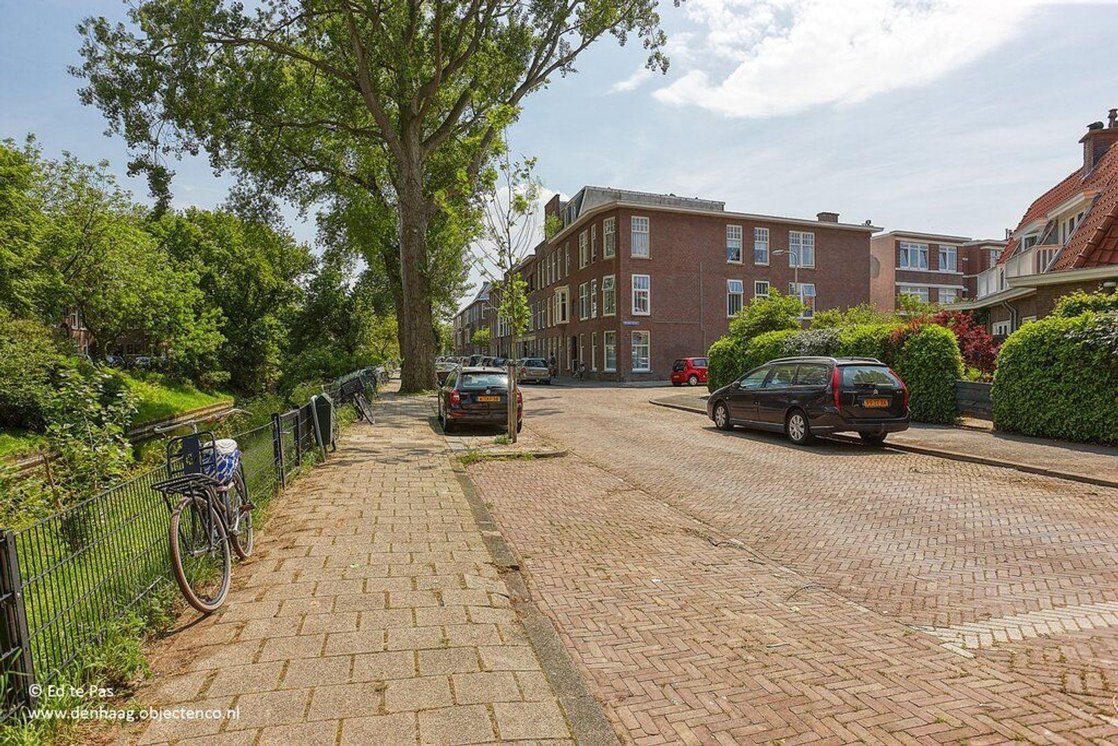 Valkenboskade, Den Haag foto-32 blur
